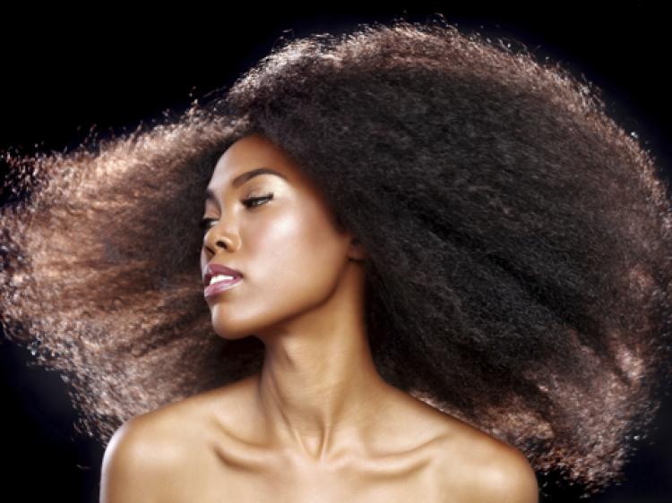 Quelques liens utiles for Salon coiffure afro lyon